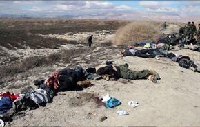 ضربة قاصمة لجبهة النصرة ولواء الإسلام بعد مقتل 175 من مسلحيها
