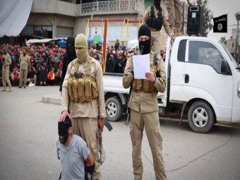 داعش2